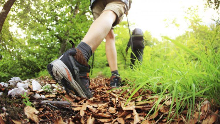 Как выбрать обувь для похода в лес